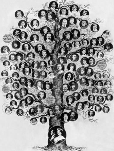 Victoria De Hanovre Genealogie Par Jacques Chanis Geneanet