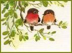 cpa oiseaux