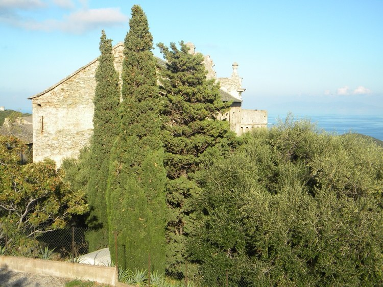 Église et cyprès en Corse