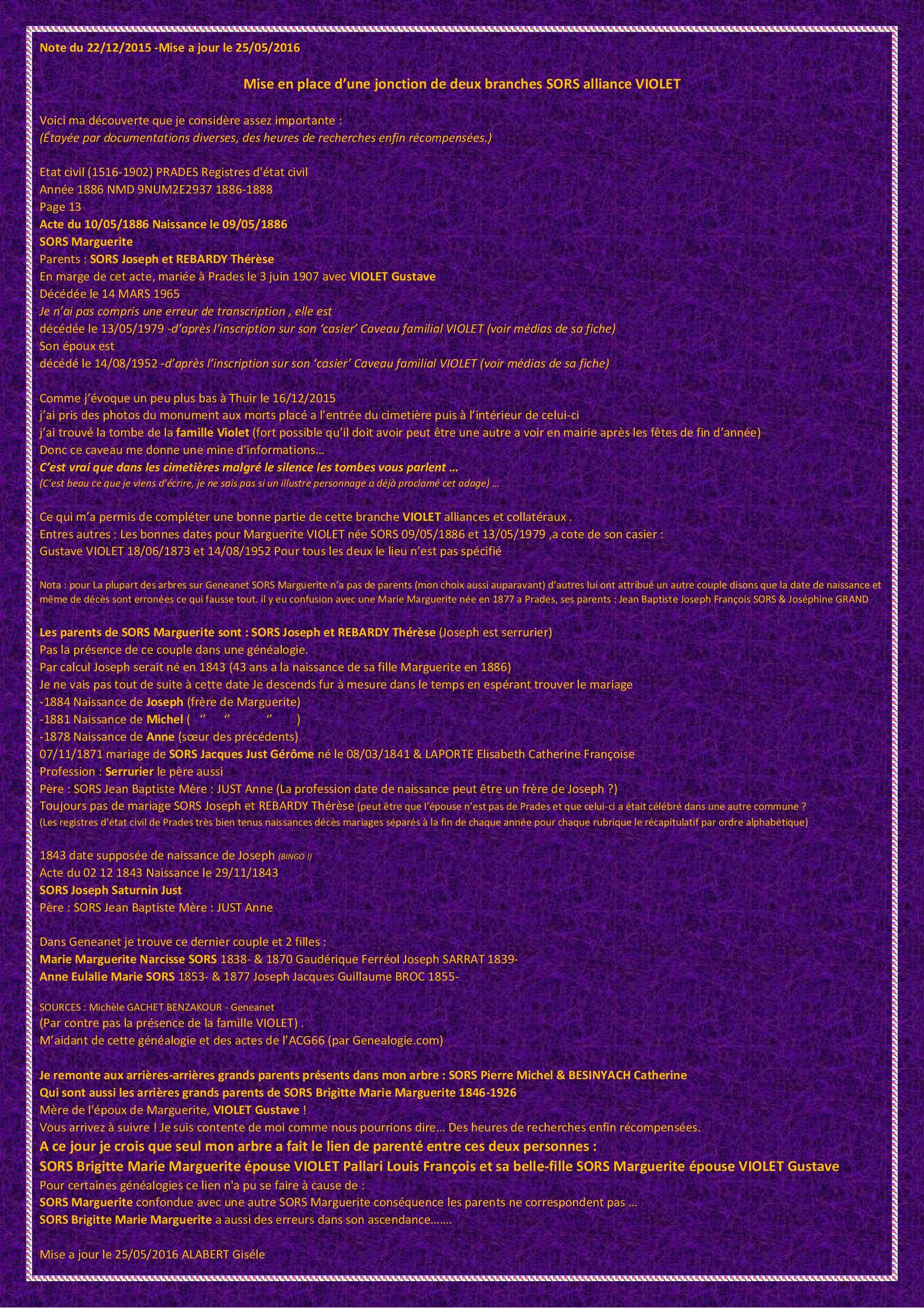 Mise_en_place_d_une_jonction_de_deux_branches_SORS_alliance_VIOLET_.jpg