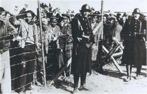 Camp d'Argelès