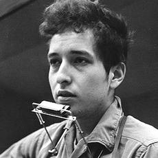 Robert Allen Zimmerman Bob Dylan Family Tree By François