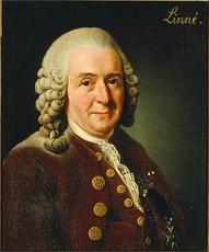 von Linné Carl